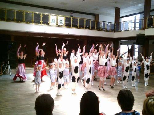 Tanečná akadémia 2014
